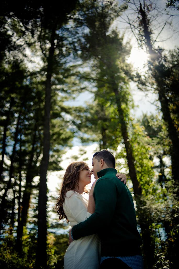 Dutchess County Hyde Park Engagement
