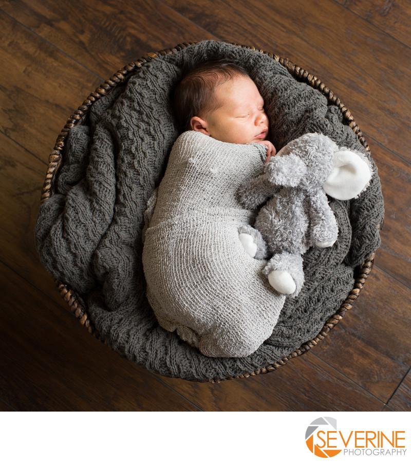 newborn boy with neutral color photos elephant