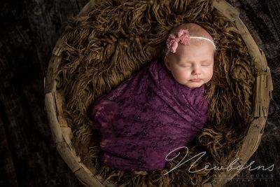 Newborn Photography Blackwood