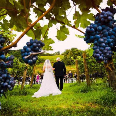 saratoga springs wedding photographer albany lake george