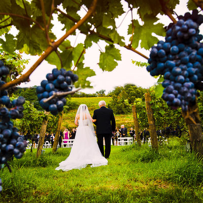 millbrook winery wedding photos