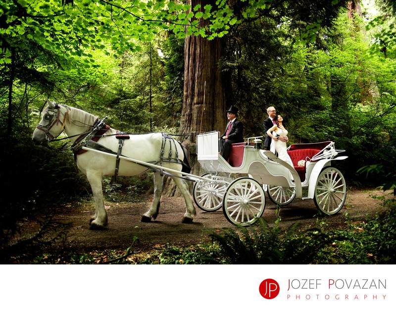 Stanley park Tea House horse carriage wedding photographer
