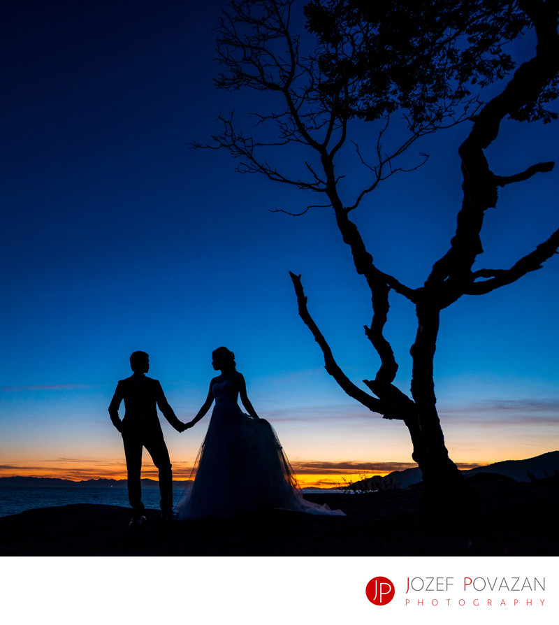 Dramatic sunset wedding silhouette pic Lighthouse park