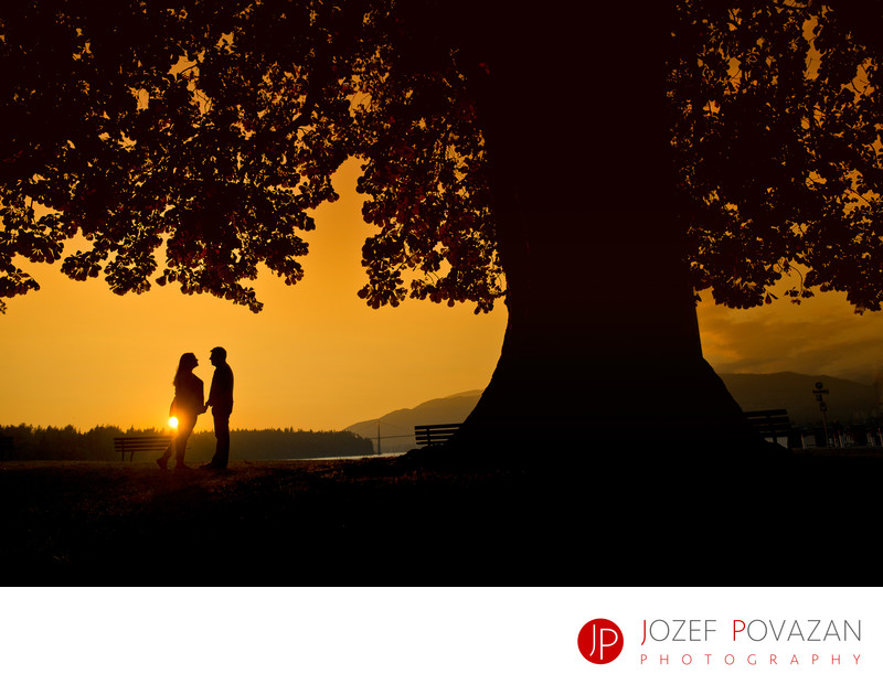 Stanley park sunset engagement at light house tree