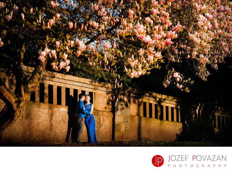 Best Vancouver engagement locations for cherry blossoms