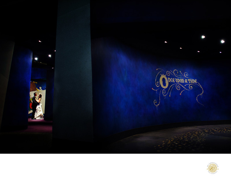 Disney Animation Wedding Photographer