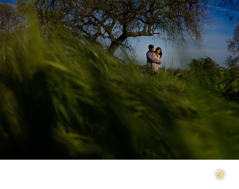 Limn Gallery Wedding Photographer