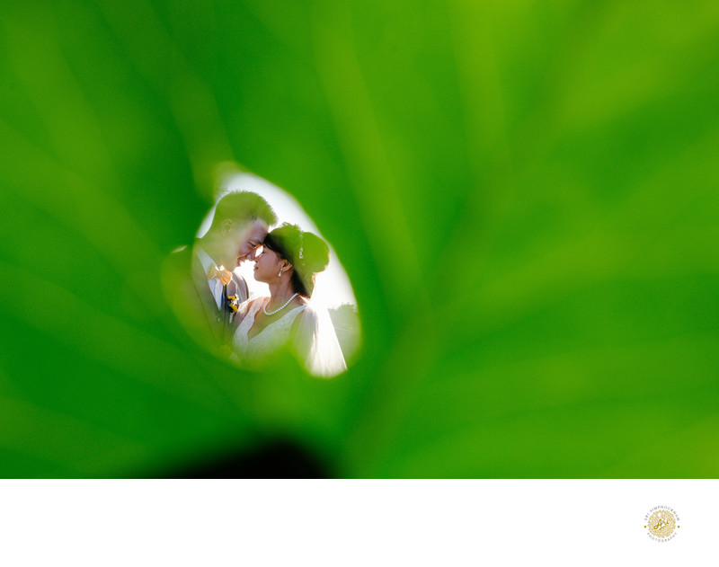 Hyatt Vineyard Creek Hotel and Spa Wedding Photography
