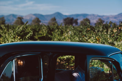 Charles Krug Winery Wedding Photographer