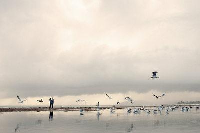 Dolphin Bay Resort, Pismo Beach Wedding