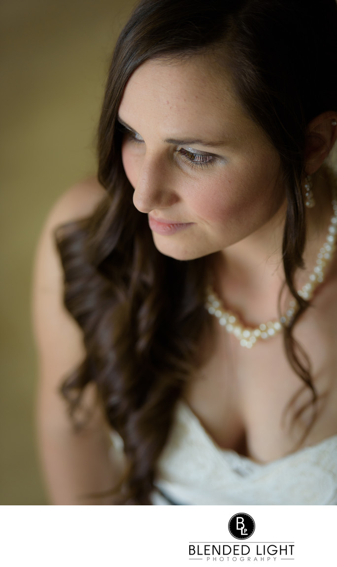 Best Raleigh Natural light bridal portrait