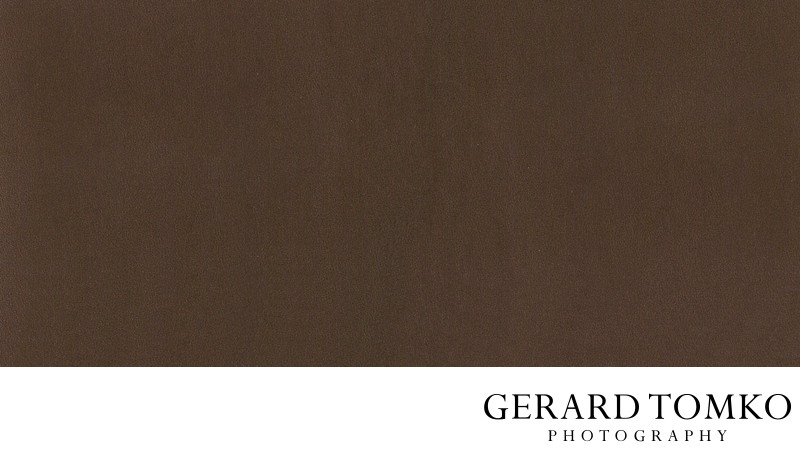 Queensberry metallic leather bronze