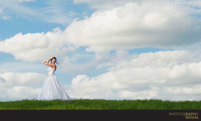 Bride with Long Veil at Rattlesnake Point Golf Club