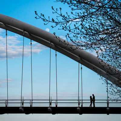 Glancing At Each Other On Humber Bay Bridge