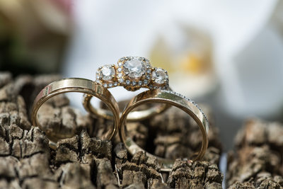 Wedding rings wedding photography