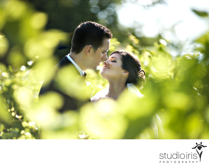 Chateau Taillefer Lafon Wedding Pictures