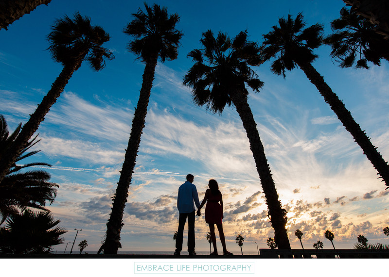 Santa Monica Engagement Portrait Palm Tree Silhouette