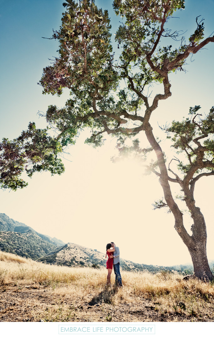 Engagement Photography Among Oak Trees and Mountains