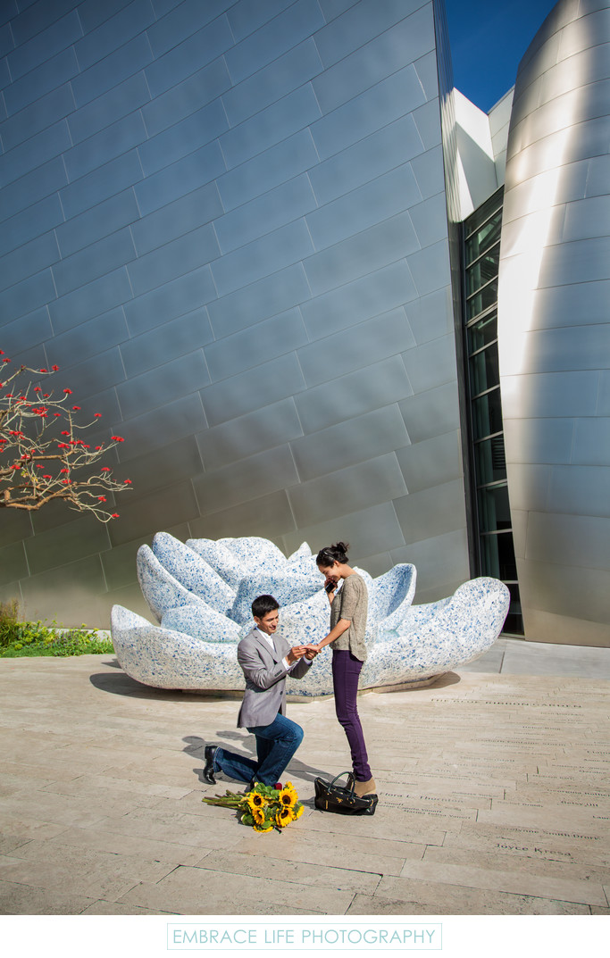 Los Angeles Marriage Proposal at Disney Concert Hall