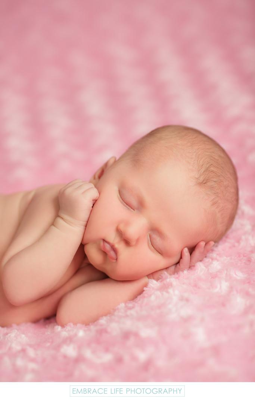 Sherman Oaks Baby Photographer