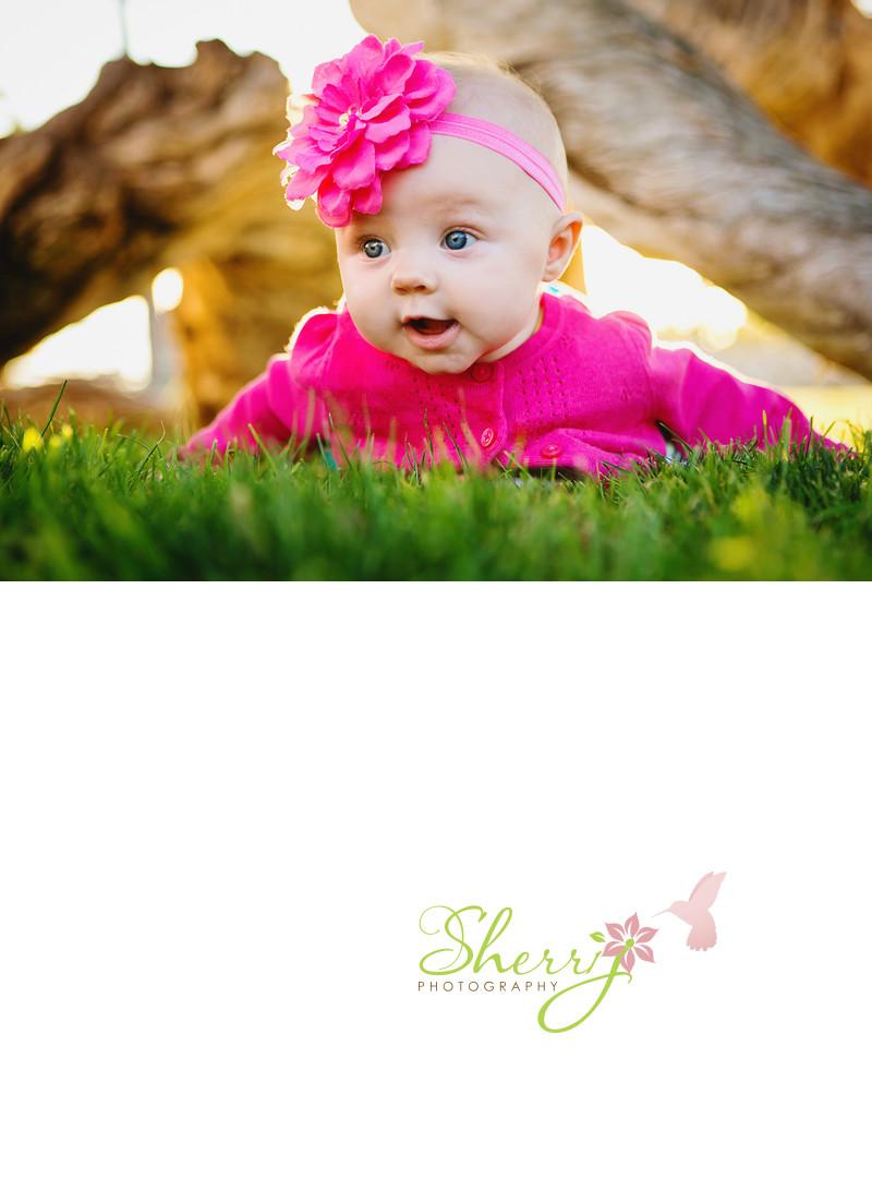 reese allen baby portrait