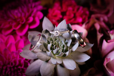 diamond wedding engagement ring set succulant