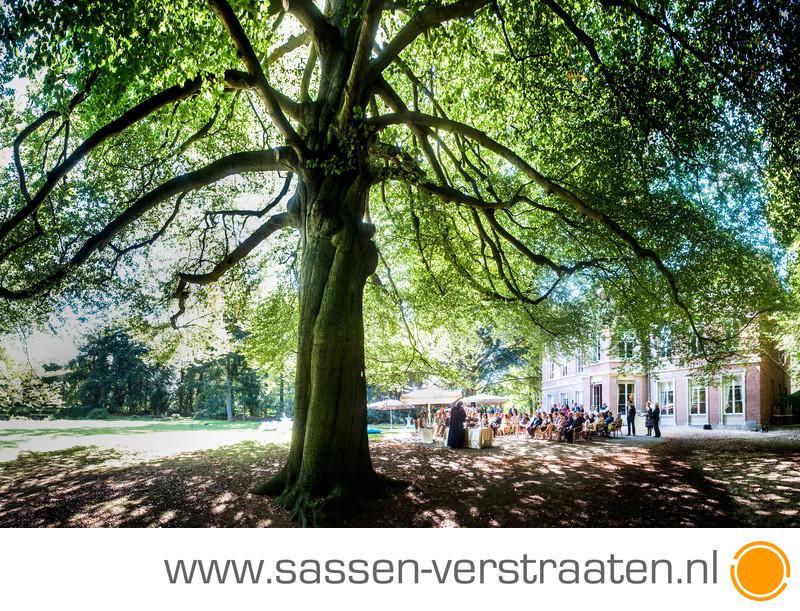 Ceremonie onder een boom