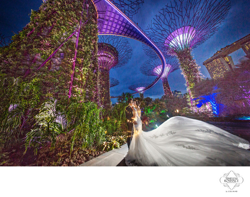Reika & James PreWedding Image @ Gardens By The Bay