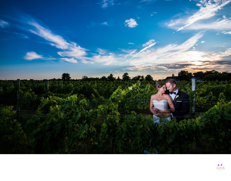 Raphael Vineyard Wedding Photography Studio