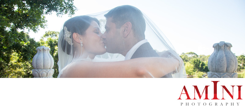 Elite Wedding Photography Packages