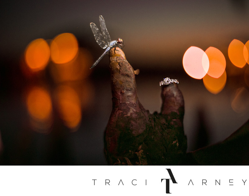 Dragonfly and Wedding Ring Detail Shot, New Bern, NC