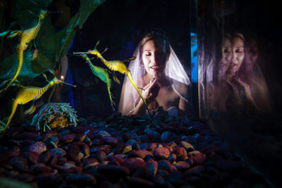 Bride and Seahorses, Ripley's Aquarium, Myrtle Beach, SC