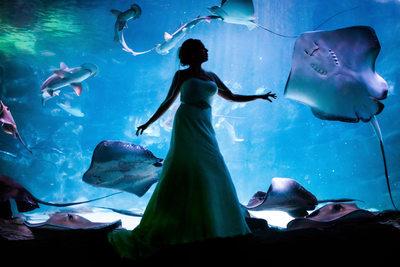 Bridal Session at Ripley's Aquarium, Myrtle Beach, SC