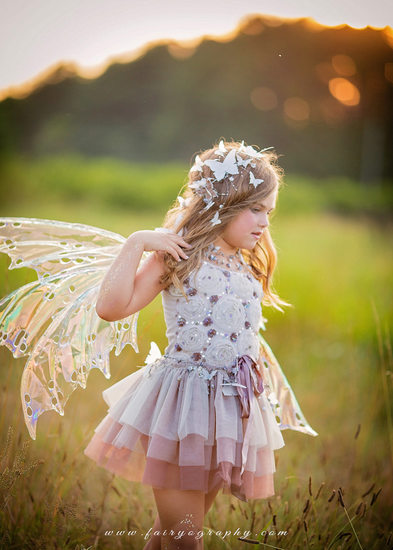 Butterfly Fairy Grass