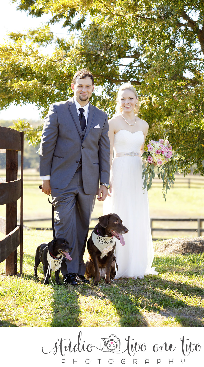 Farm at Ridgeway Wedding pictures