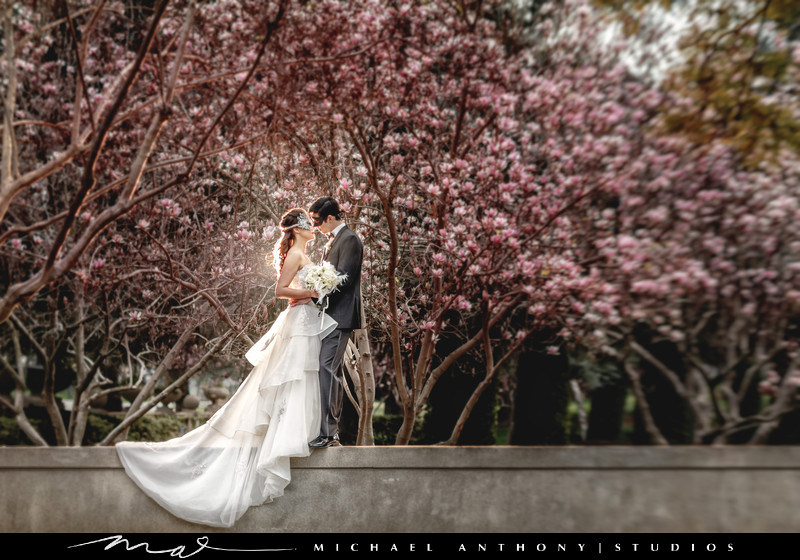 An outdoor Wedding at the Ambassador Mansion in Pasadena
