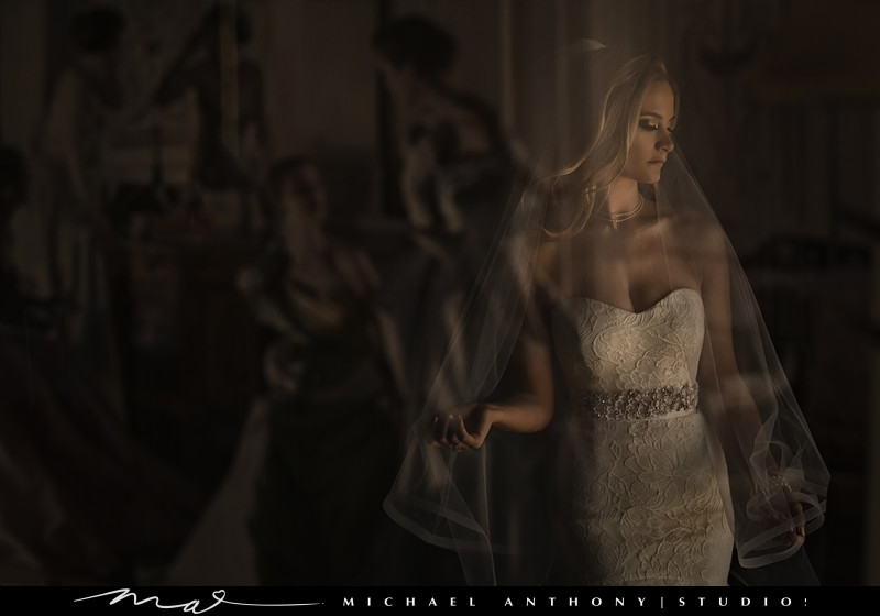 Wedding Veil Photo Ideas