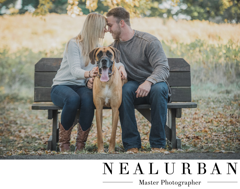 buffalo engagement photographer knox farm dog lifestyle