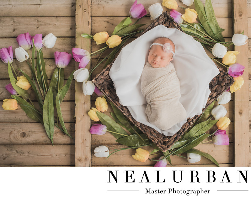 buffalo baby newborn photography flowers sleeping girl