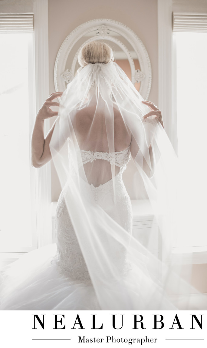 buffalo ny wedding photographer bridal suite light veil