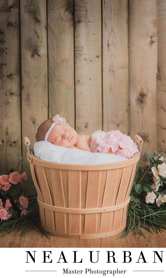 buffalo baby newborn photography flowers basket girl