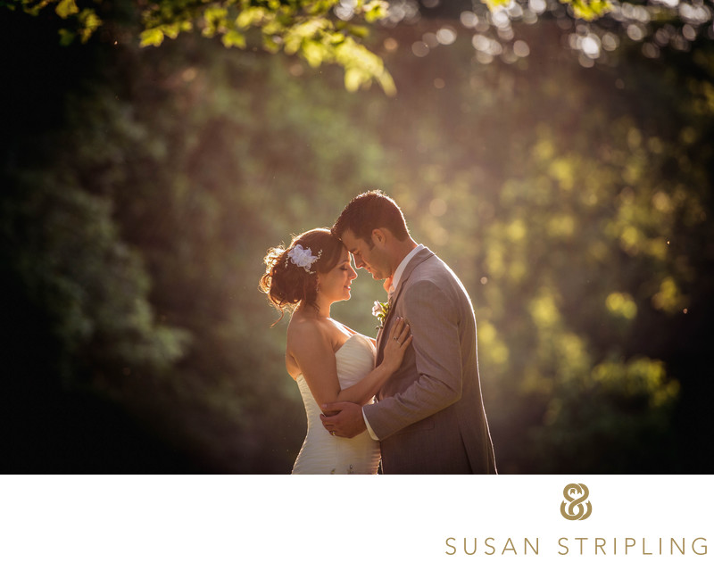 Fonthill Castle Wedding Photography