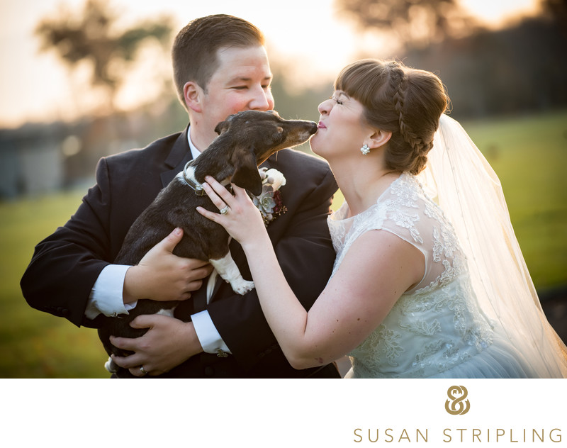 Horsham Wedding Photographer