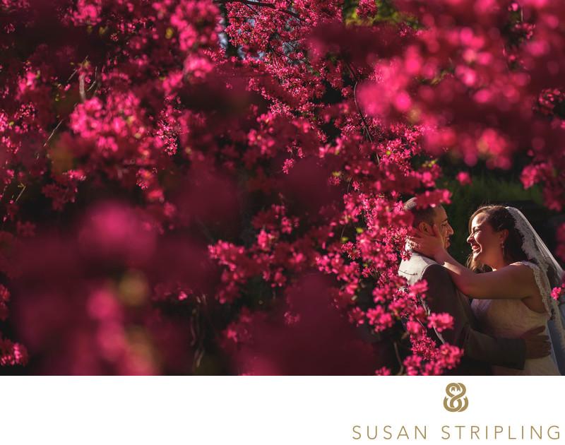 Stone Mill Wedding Photographers