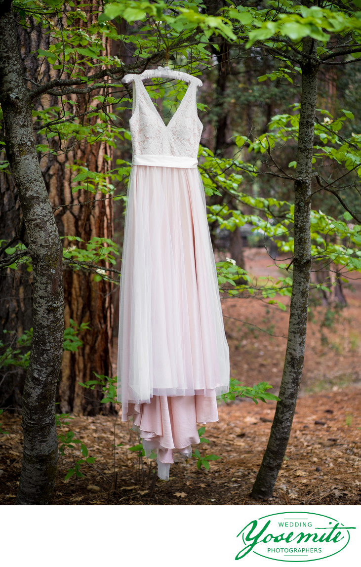 Bride's Pink Dress Hangs From Tree in Yosemite