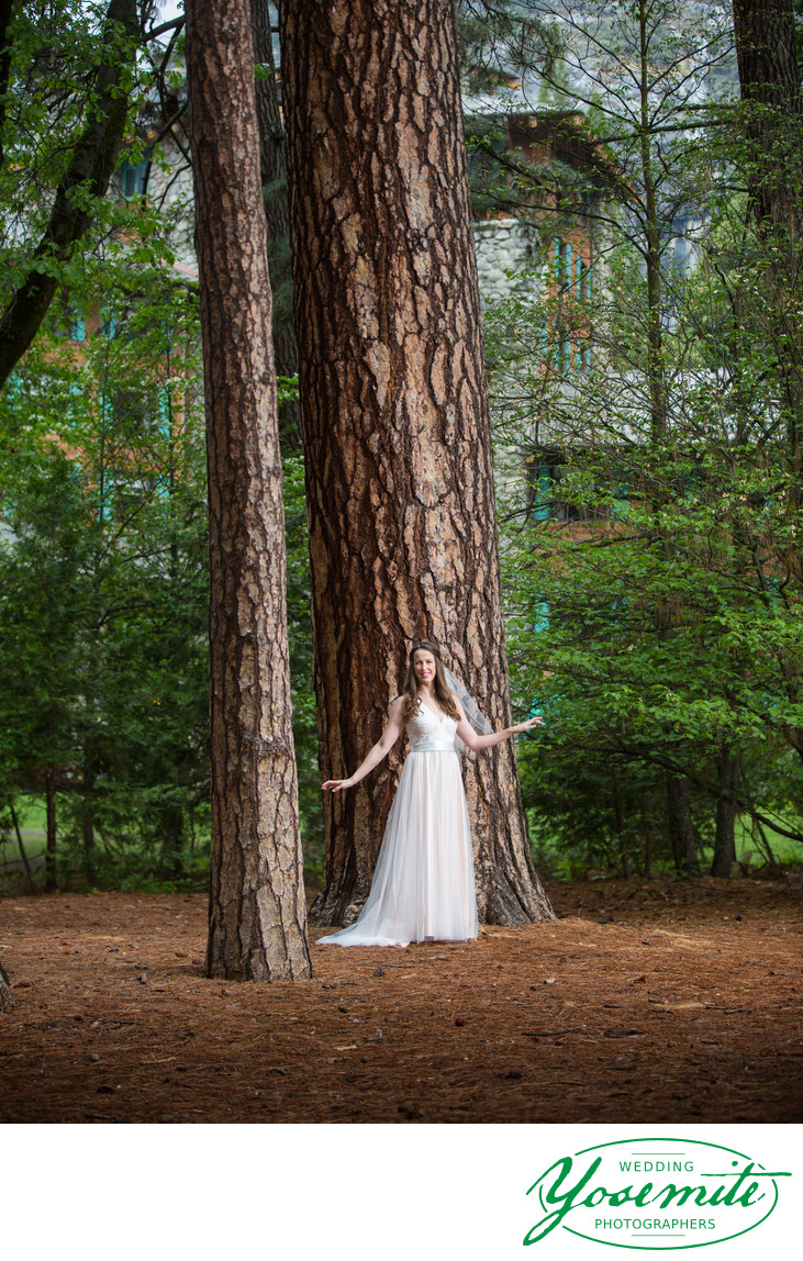 Bridal Portrait Under Big Trees at Majestic Yosemite Hotel