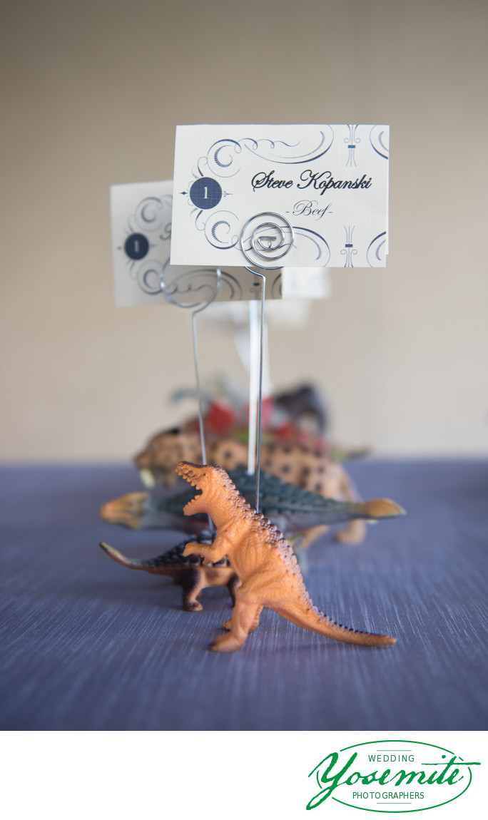 DIY Dinosaur Placecard Holders At Tenaya Lodge Wedding