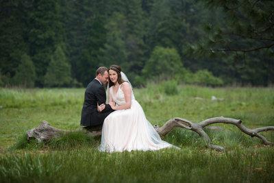 Bride And Groom In Meadow Yosemite Wedding