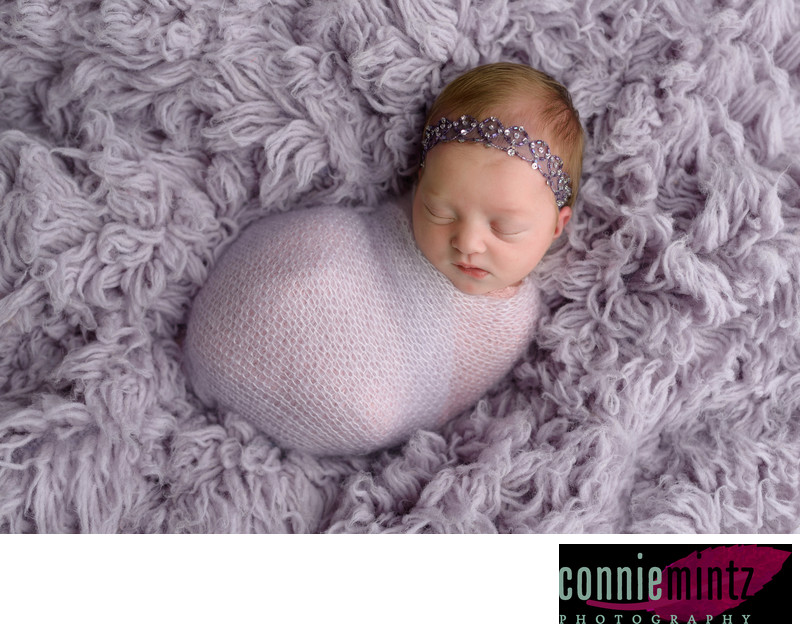 Connie Mintz Newborn photographer professional and safe