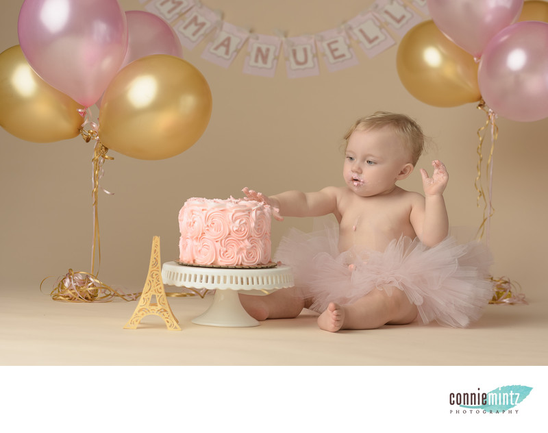 One Year Old Cake Smash with Paris Theme